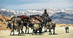 Nomaden – Der lange Treck der Bakhtiari